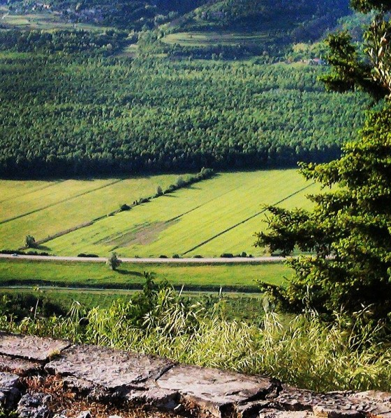 Travel with Tia Teilli: Motovun