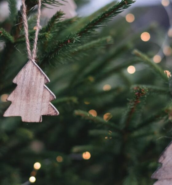 Christmas Ornaments: Easy and Festive